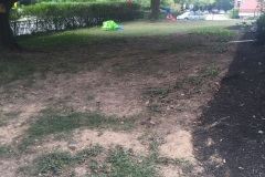 Grading and Sod Installation - Before (Barrett)