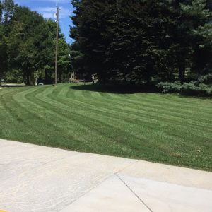 Lawn Mowing in Catonsville, Ellicott City, Columbia, and
